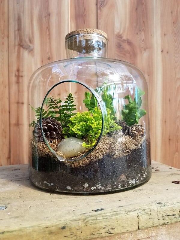 Vidros criativos servem de suporte para o cultivo do terrário de suculentas