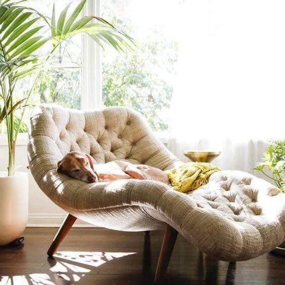 Sala confortável com divã capitonê