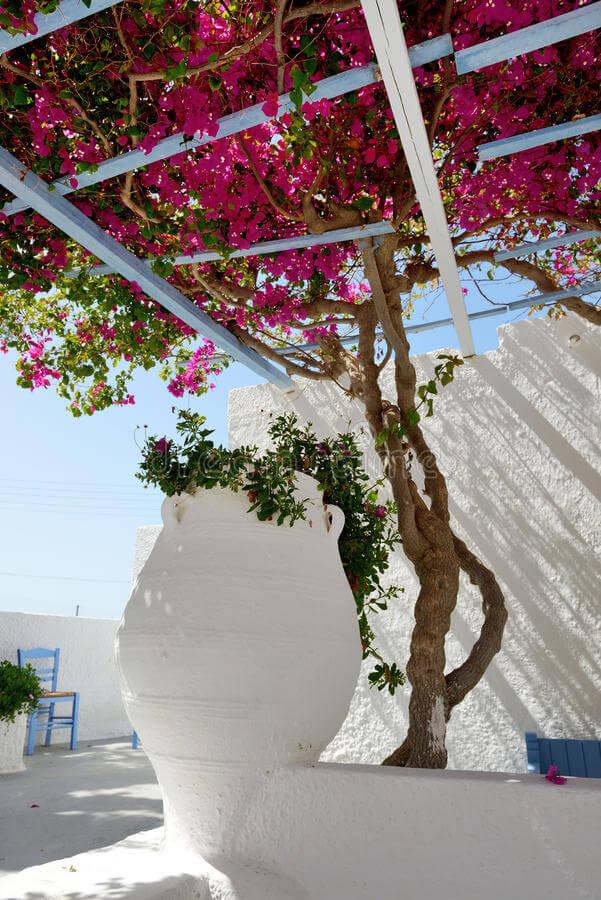 Vaso ânfora branco para jardim