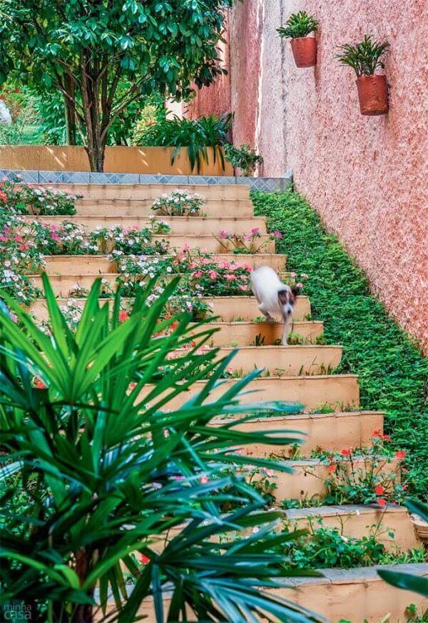 A grama amendoim se destaca na lateral da escada
