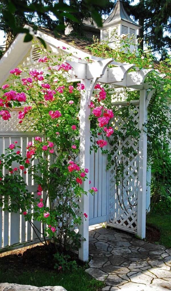 A rosa trepadeira fixada no pequeno caramanchão branco traz cor para a entrada da casa