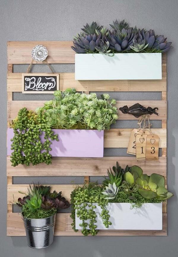 Cultive hortaliças na sua floreira rústica de parede