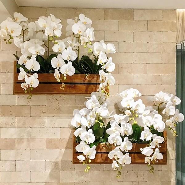 Cultive lindas orquídeas na sua floreira de parede