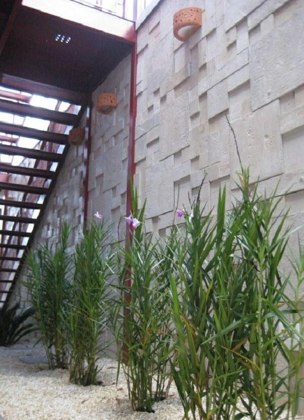 Decore o seu muro com a bambu orquídea