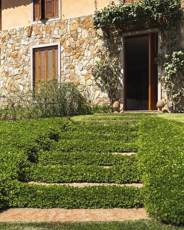 Espalhe semente de grama amendoim ao longo da estrutura da escada
