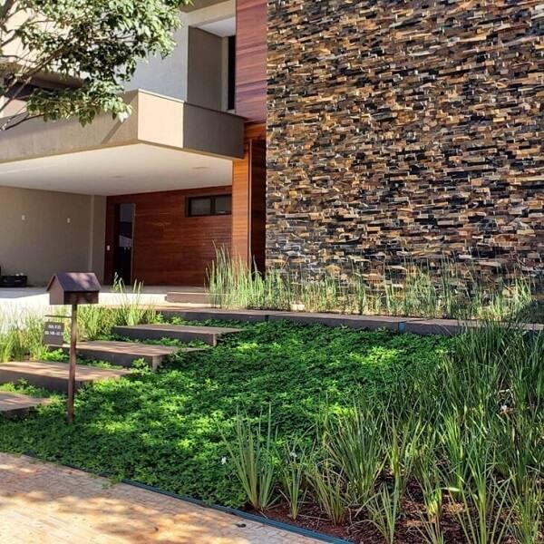 Espalhe semente de grama amendoim no jardim de entrada da casa