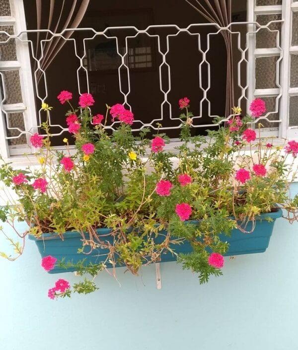 Floreira de parede externa feita de plástico