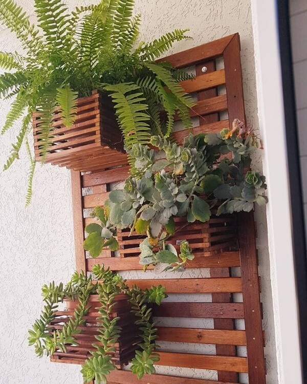 Você pode colocar diferentes tipos de plantas na sua floreira de parede