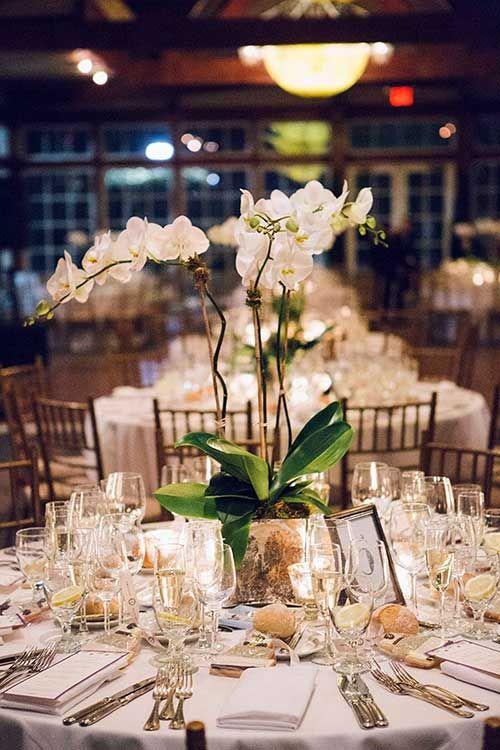 Mesa de jantar com vaso de orquídea branca
