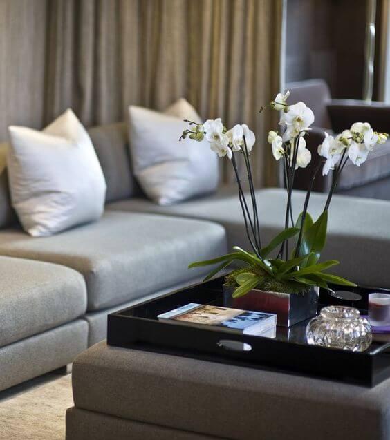 Sala de estar com orquídea branca