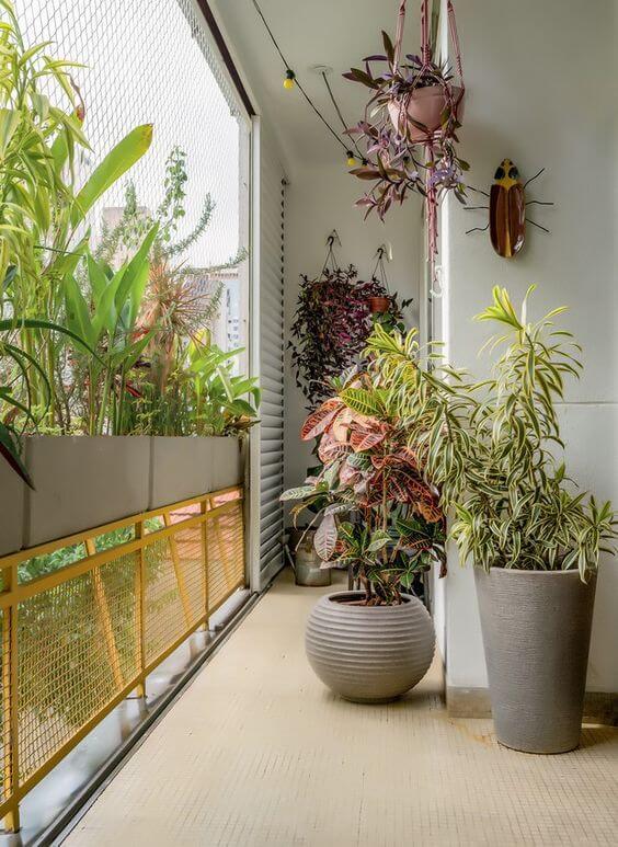 Varanda com planta croton