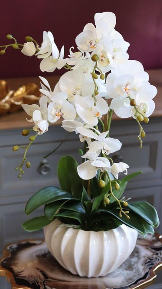 Vaso detalhado com orquídea branca