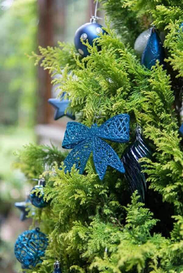 The blue Christmas tree gives modernity to the environment
