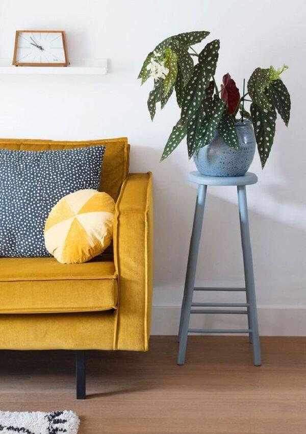 Traga verde para sala de estar incluindo uma linda Begônia Maculata na decoração