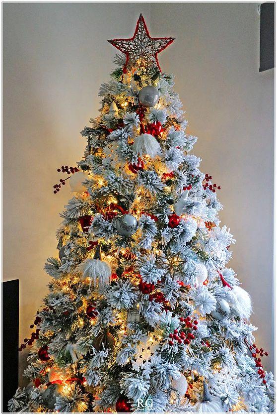 Árvore de natal com estrela de natal no topo