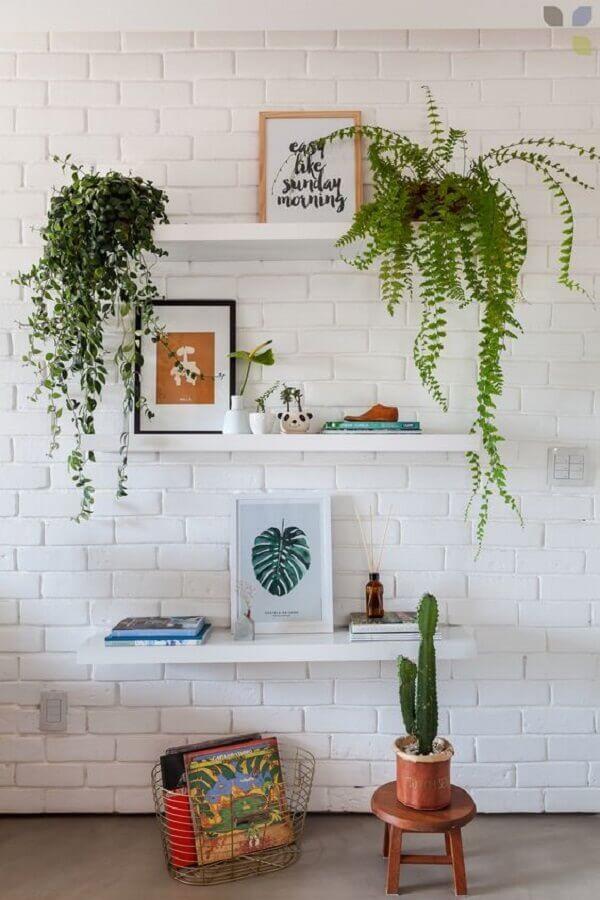decoração clean com prateleira para plantas em parede de tijolinho  Foto Carol Tasiro