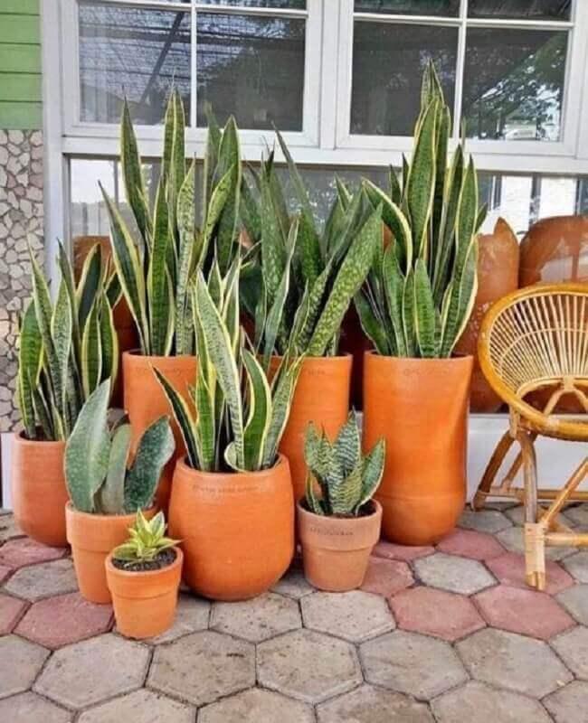 decoração tons terrosos com vasos de cerâmica natural  Foto That Planty House