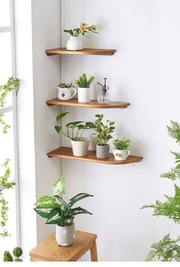 delicada decoração com prateleira de madeira para plantas Foto Pinterest