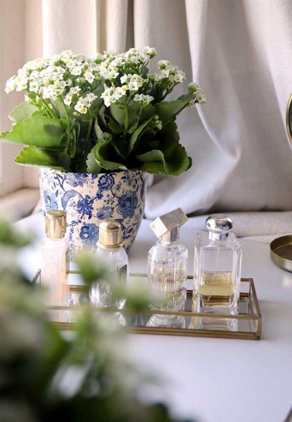 Decore sua casa com lindos vasos de flor da fortuna