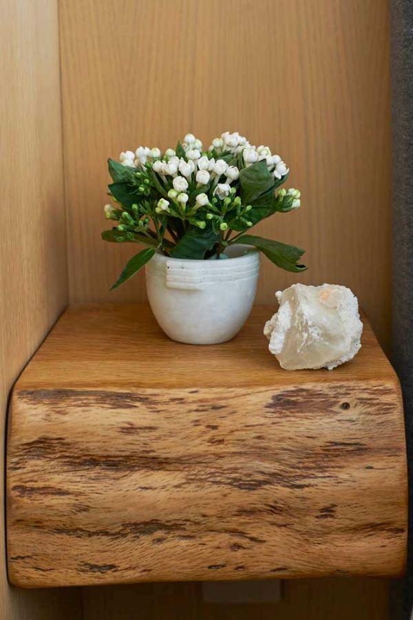 Flor da fortuna branca delicada