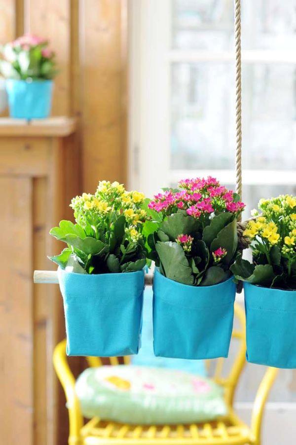 Jardim suspenso com flor da fortuna amarela e cor de rosa