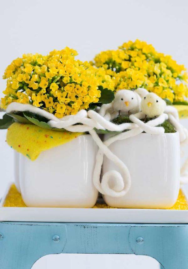 A kalanchoe, também chamada de flor de fortuna, é ainda mais bonita na cor amarela
