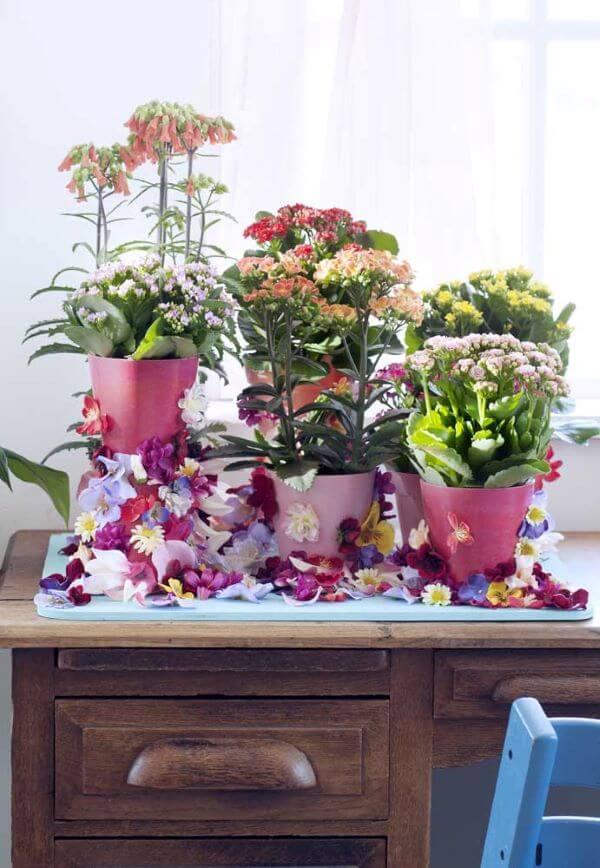 Decoração rustica com vasos de flor da fortuna de todas as cores