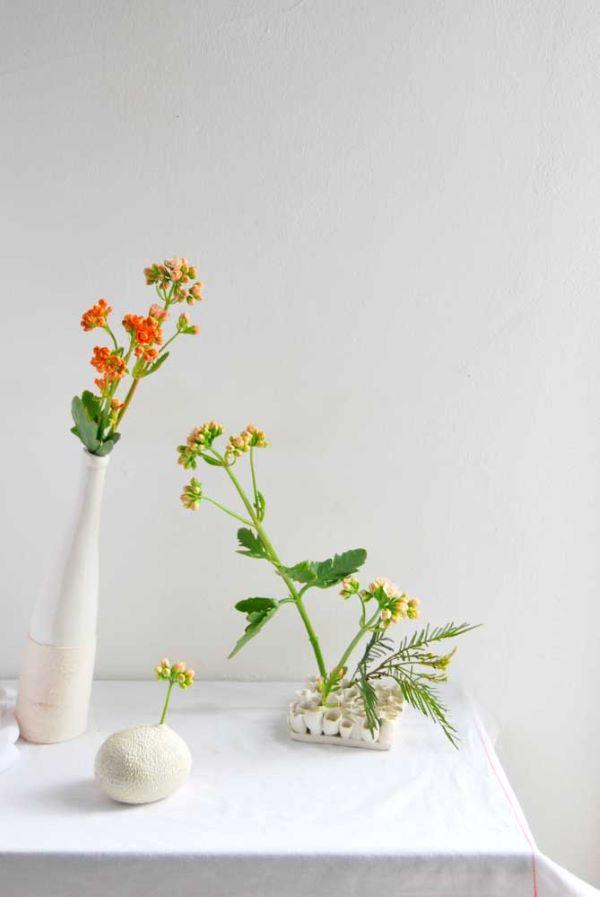 Kalanchoe flor da fortuna fica ainda mais linda em vasos brancos