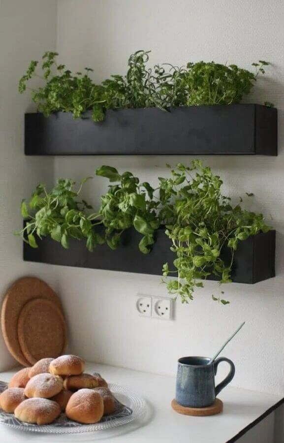 prateleira para plantas na cozinha Foto Fashion Bubbles