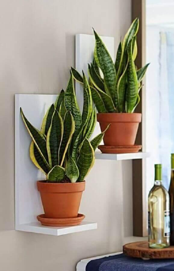 prateleira para vasos de plantas Foto Dcore Você