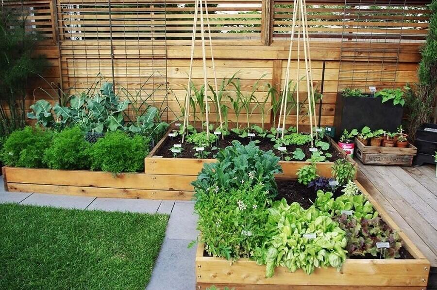 quintal com horta orgânica Foto Greenk
