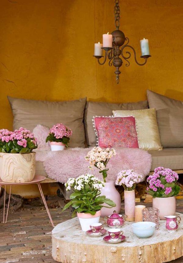 Sala de jantar com flor da fortuna