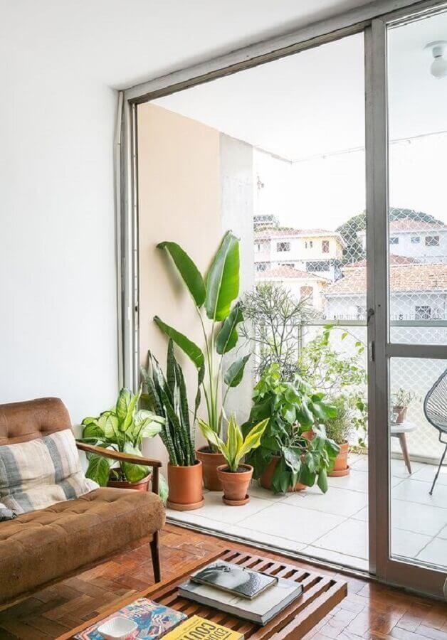 vasos de plantas para varanda de casa  Foto Histórias de Casa