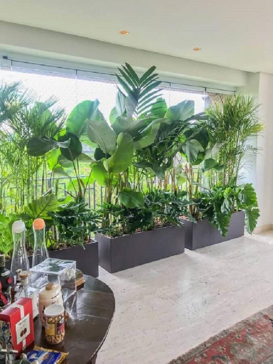 vasos de plantas para varanda grande  Foto Casa de Valentina