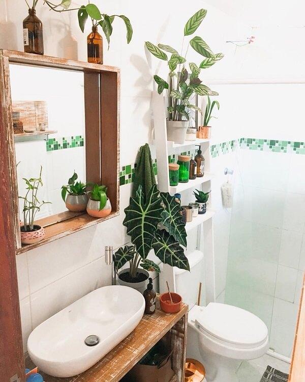 A Alocasia é perfeita para ser cultivada no banheiro