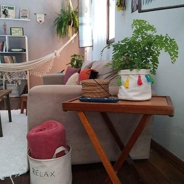 A Avenca é ótima para decorar a casa
