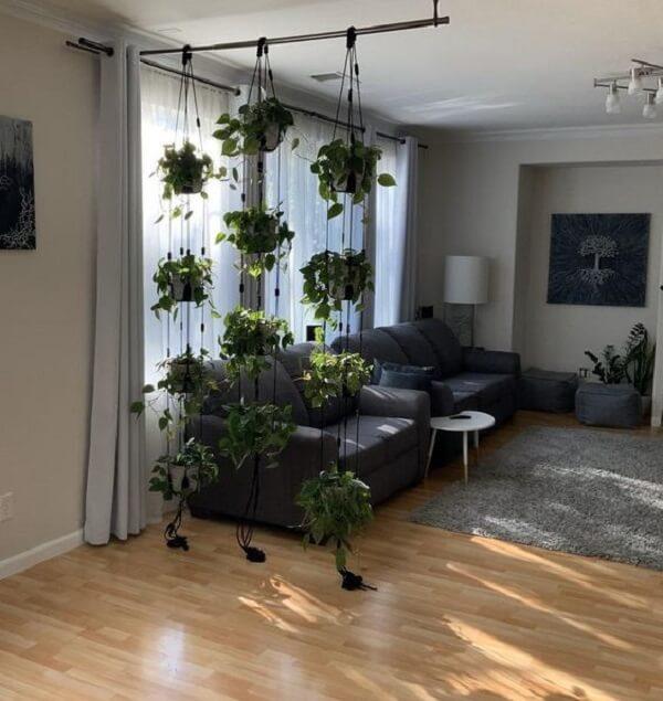 As cordas fixadas no teto ajudam a manter os vasos para jardim suspenso
