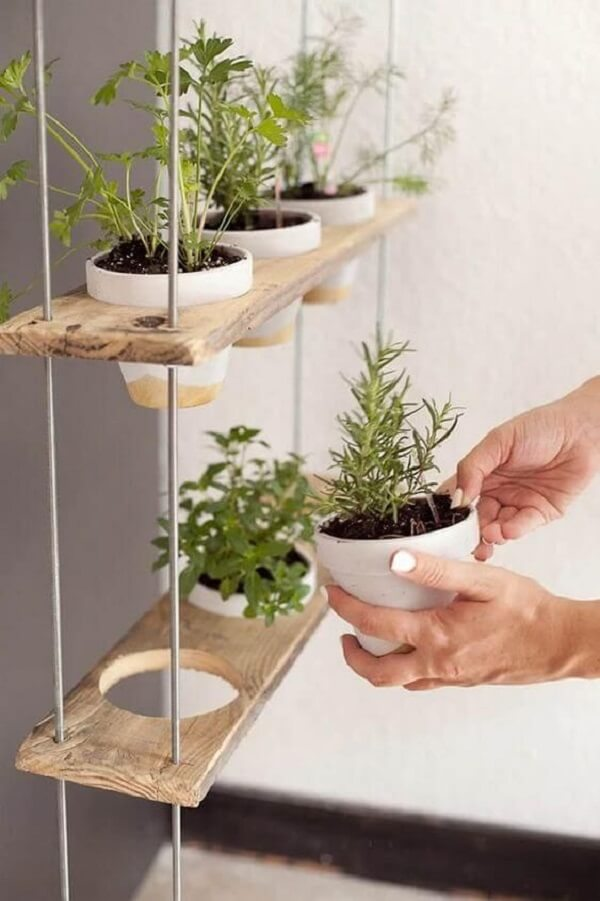 Cultive vários temperos nos vasos para horta suspensa