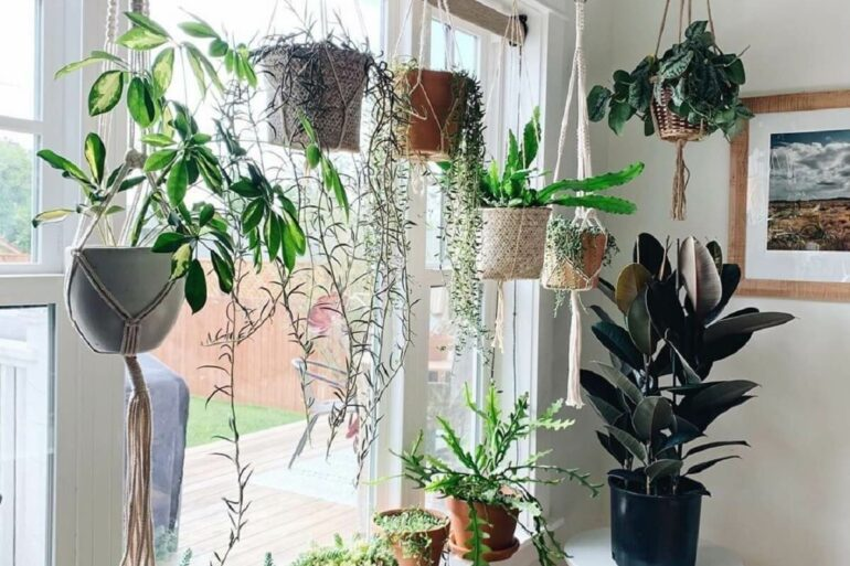 Os vasos para jardim suspenso foram fixados próximos à janela