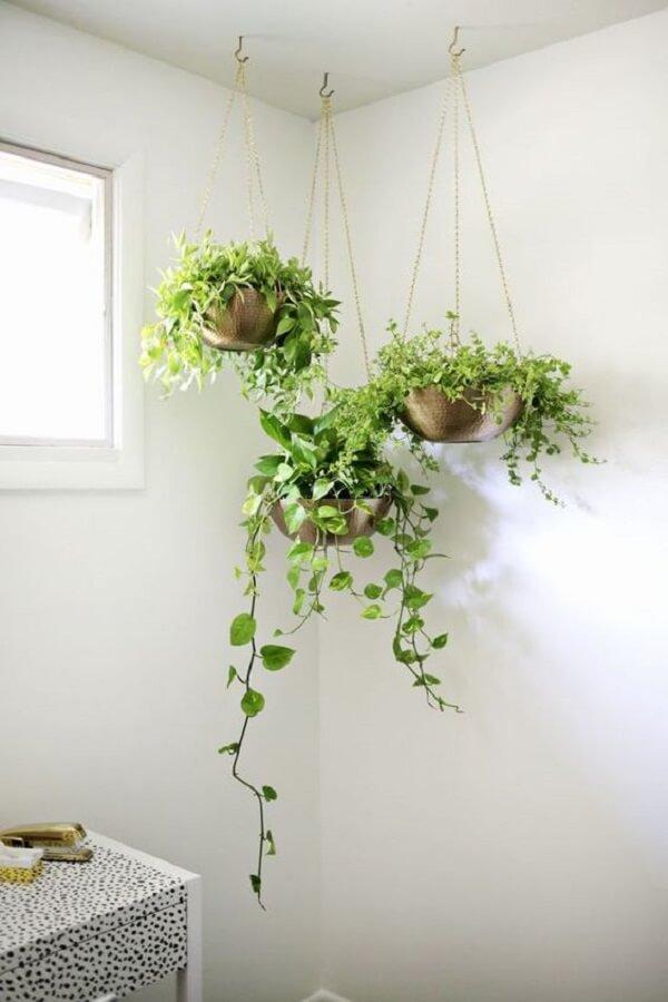 Planta ornamental plantada em vasos suspensos no banheiro