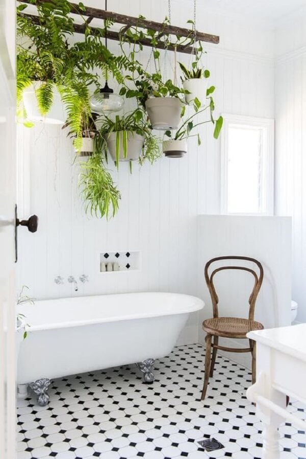 Se seu banheiro for iluminado a planta ornamental plantada em vasos suspensos irá crescer de forma saudável