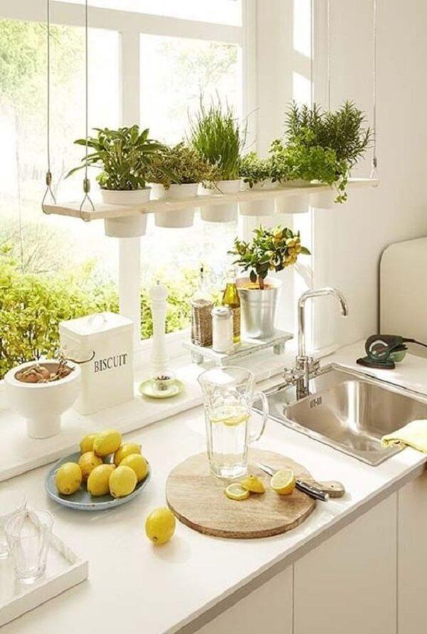 Vasos para horta suspensa clean traz temperos fresquinhos para cozinha