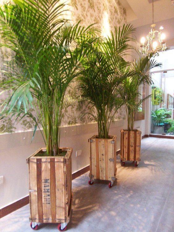 Vaso de madeira rustica feita de caixote
