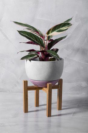Vaso com pé de madeira