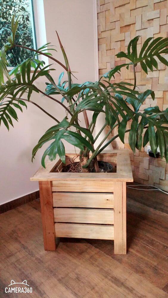 Vaso de madeira grande para plantas na sala
