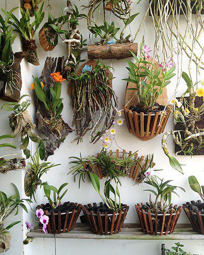 Vaso de madeira para parede com flores de diferentes espécies