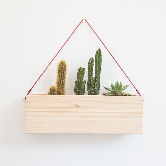 Vaso de madeira com suculentas e cactos