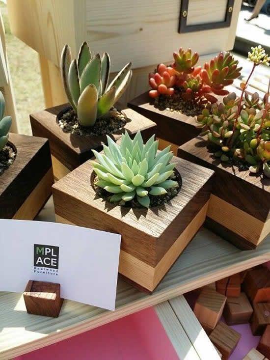 Vaso de madeira para decorar a casa com suculentas
