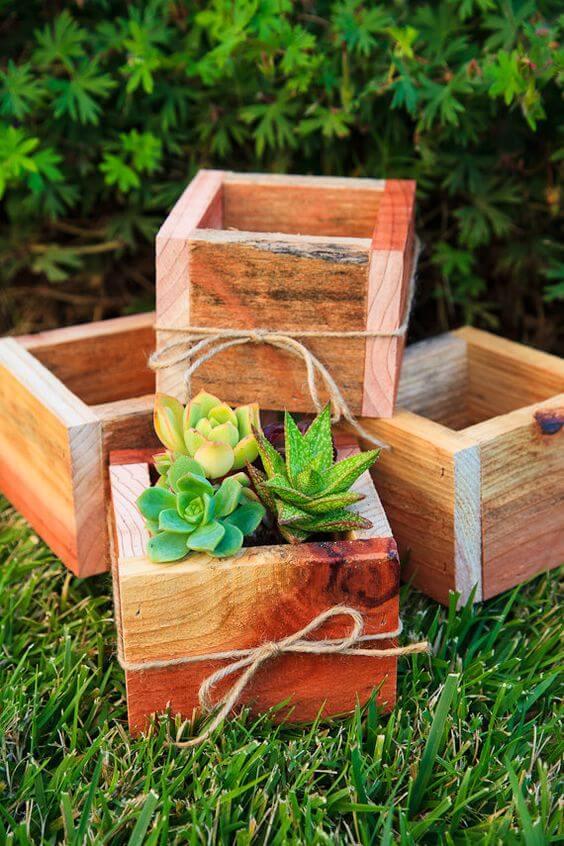 Vaso de madeira pequeno para usar como lembrancinha de plantas
