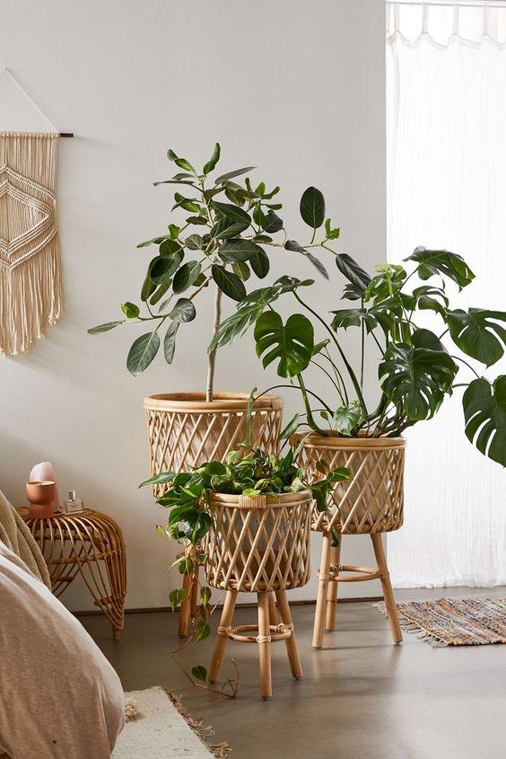Vaso de madeira para sala de estar